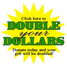 Double Your Dollars