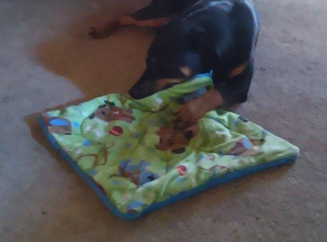 vivian's blankets